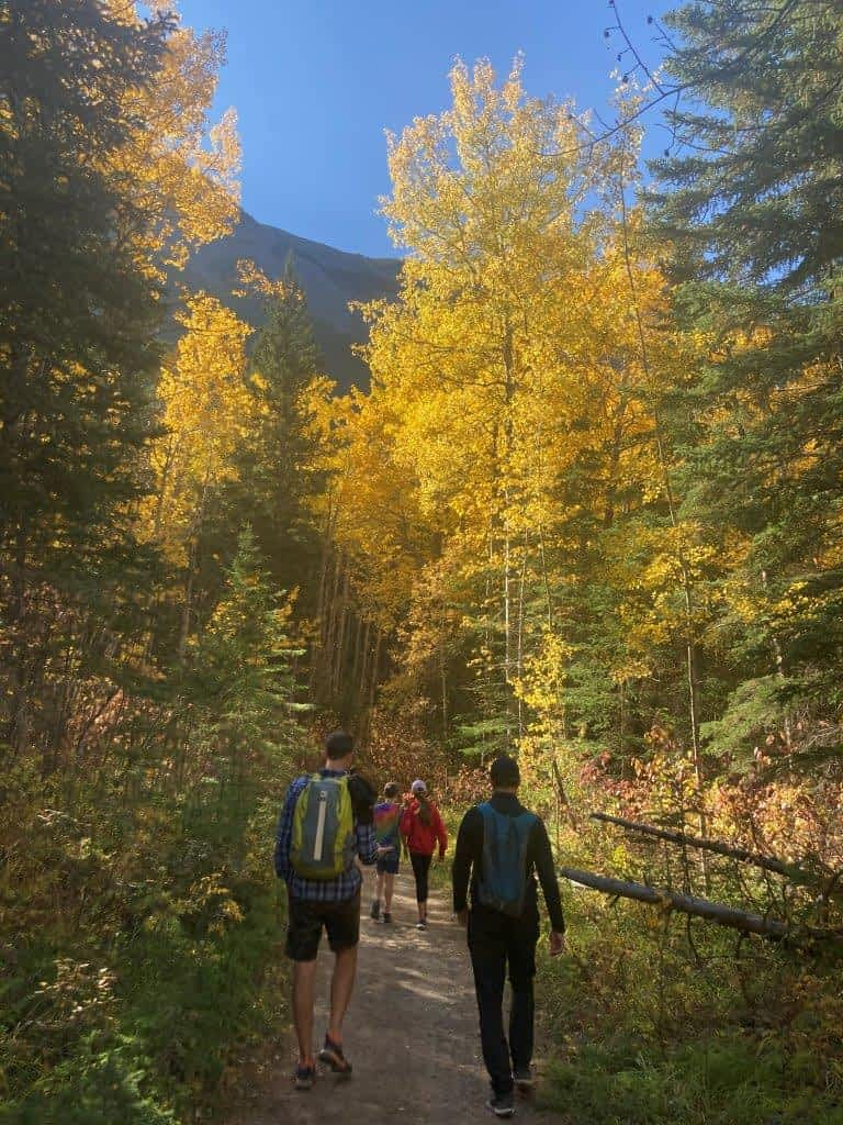 Family walking on trail with fall trees