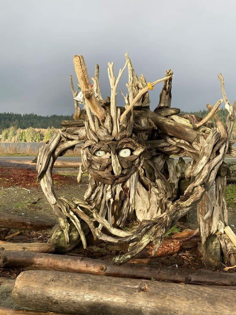 Driftwood sculpture at Esquimalt Lagoon Victoria BC