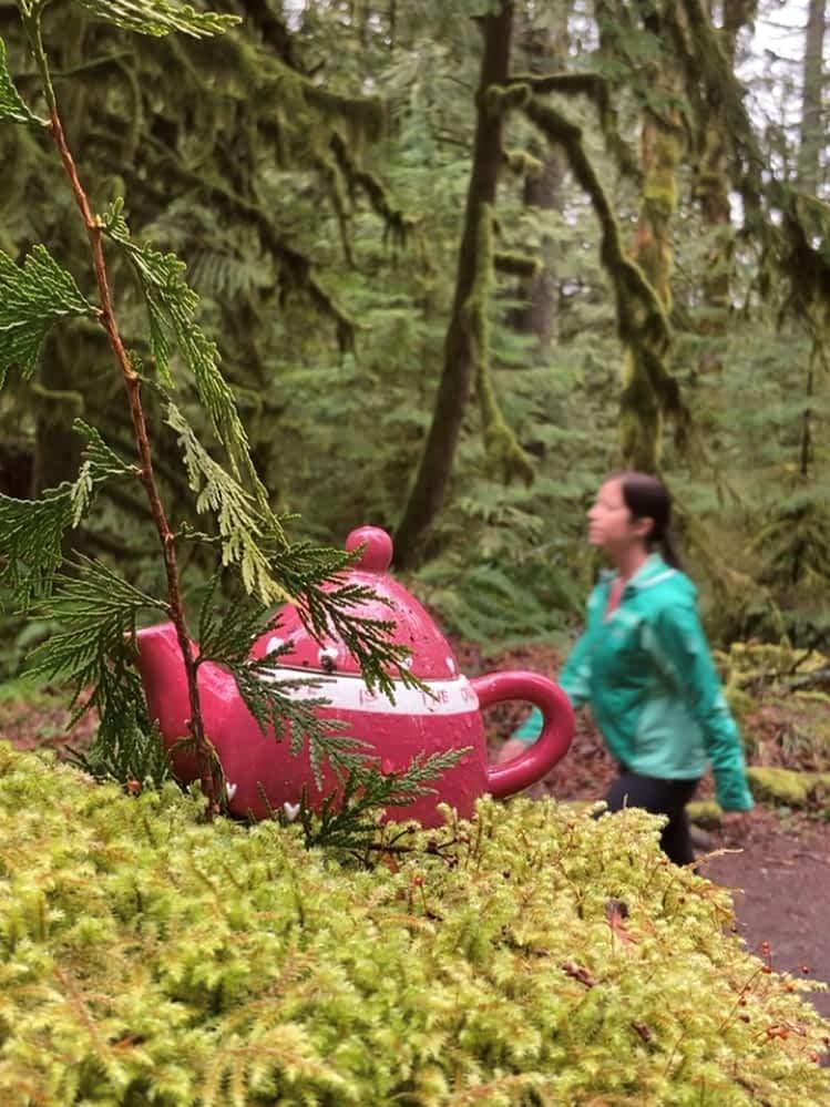 Woman walking past a pink tea pot on moss on the tea pot hill hike