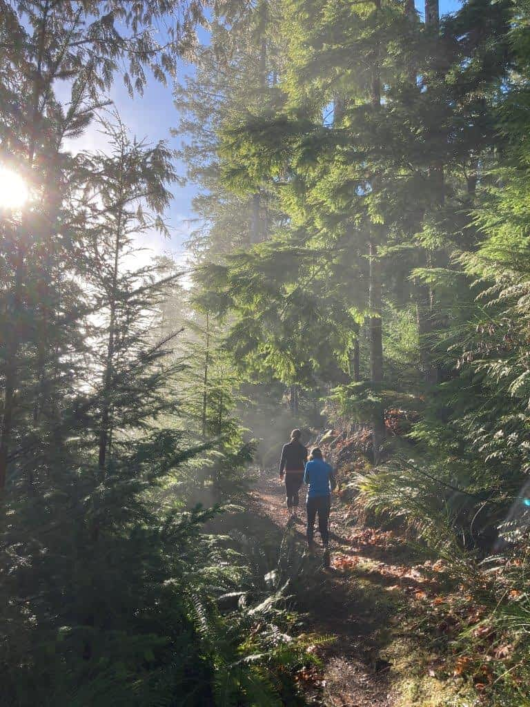 Hiking in the trees on Bald Mountain