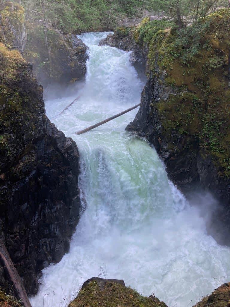 Little Qualicum Falls BC
