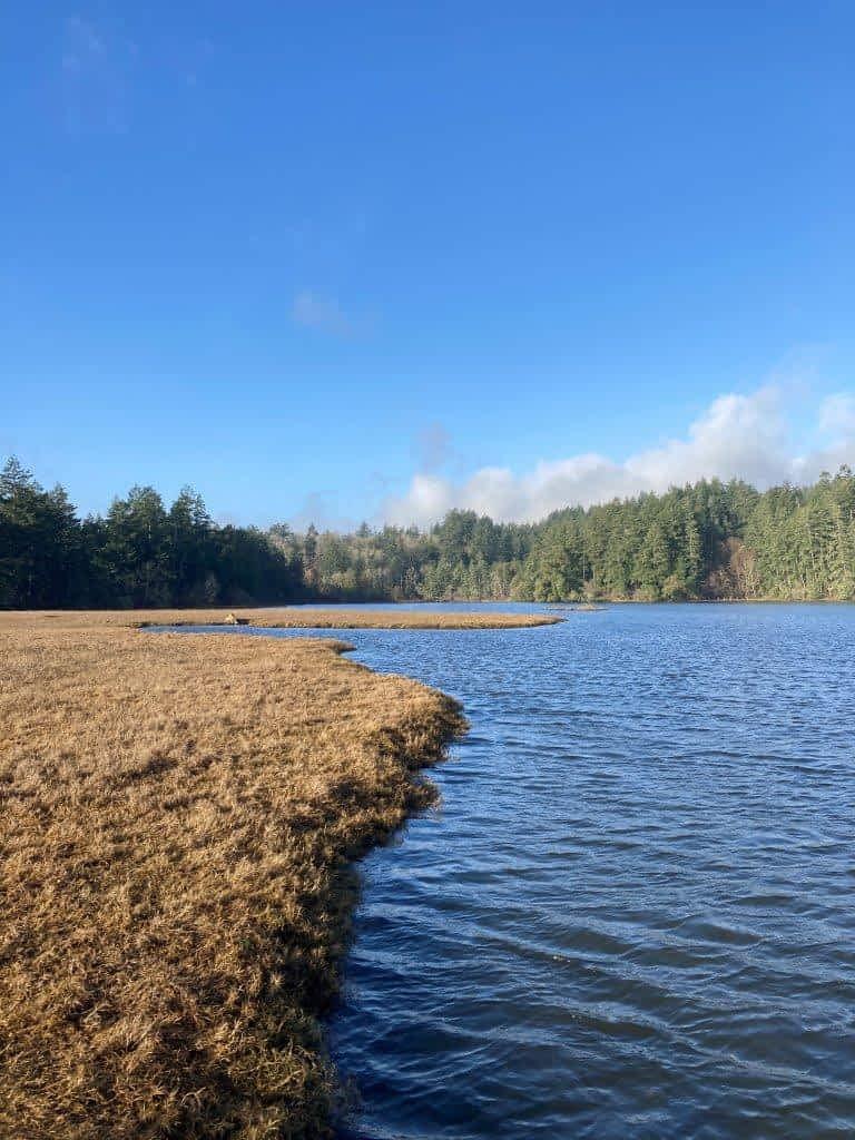 Witty's Lagoon BC